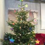 WeihnachtsbaumQueer
